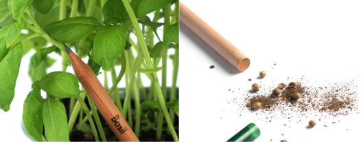The pencil planted and the pencil with the cap open to show the seed contents inside